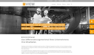 SKOPOS VIEW Webseite